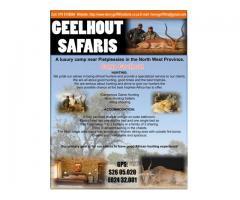 Geelhout Safaris