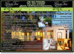 Lemon Tree Lane( Bed & Breakfast)