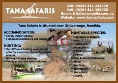 Tana Safaris