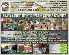 Leopard Lily B & B