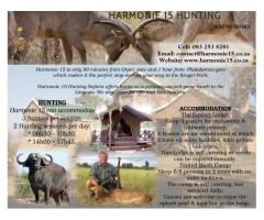 Harmonie 15 Hunting