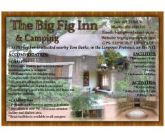 The Big Fig Inn & Camping