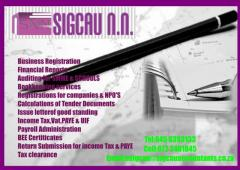 Sigcau  NN Professional Accountants