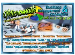 Micromath Business & Management Consultant