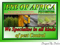 EYE OF AFRICA Pest Control