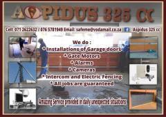 Aspidus 325 cc