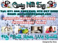 Cleaning-Maid-Easy