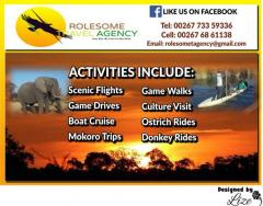 Rolesome Travel Agency