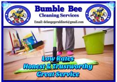 Bumble Bee Cleaning Services