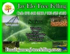 Jay Elo Tree Felling