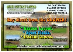 Oribi Instant Lawns