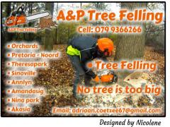 A&P Tree Felling