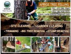 Afrige Tree Felling