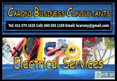 CARONI BUSINESS CONSULTANTS