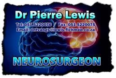 Dr Pierre Lewis