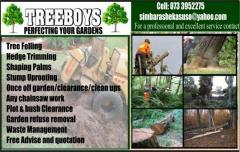 TREEBOYS PERFECTING YOUR GARDENS