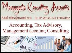 Moepagauta Consulting Accounts