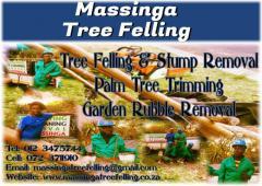 Massinga Tree Felling