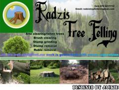 Radzis Tree Felling