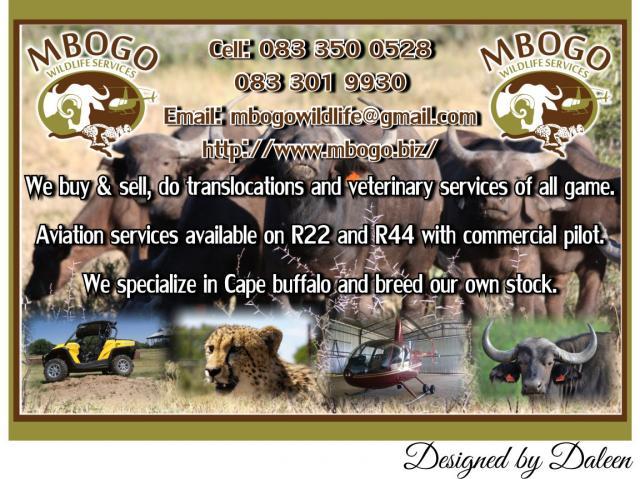 Mbogo Wildlife Services
