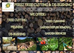 Perez Tree Cutting & De-Bushing