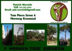 P Wernich Tree  Surgeon