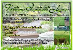 Fortune Instant Lawn