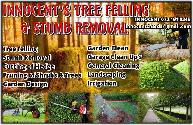 Innocent's Tree Felling & Stumb Removal