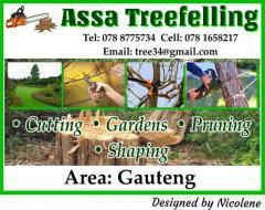 Assa Treefelling