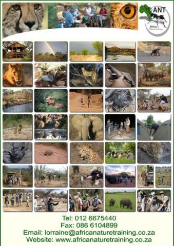 Africa Nature Training