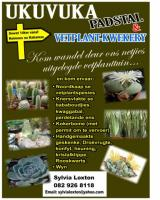 Ukuvuka Padstal & Vetplant - Kwekery