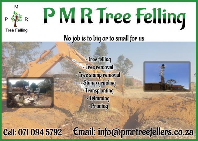 P M R Tree Felling