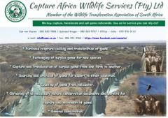Capture Africa Wildlife Services (Pty) Ltd
