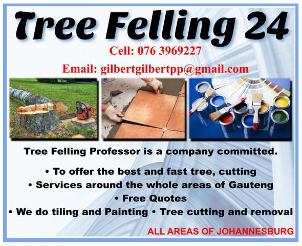 Tree Felling 24