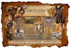 Andre van Rooyen Taxidermy