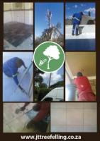 JT Tree felling and Maintenance
