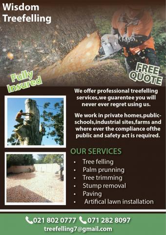 Wisdom Tree felling