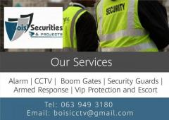 Boisi Securities & Projects
