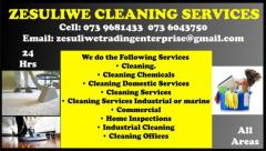 Zesuliwe Cleaning Services