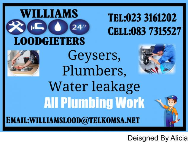 WILLIAMS LOODGIETERS Ceres - Contractors Directory