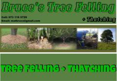 Bruce's Tree Felling + Thatching