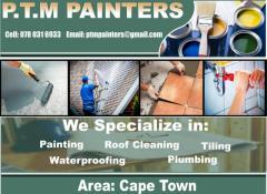P.T.M Painters