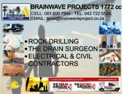 Brainwave Projects