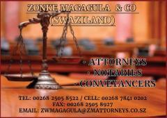 Zonke Magagulia & co